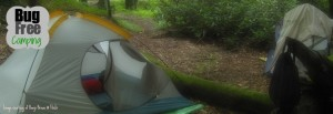 bug free camping with doTERRA essential oils