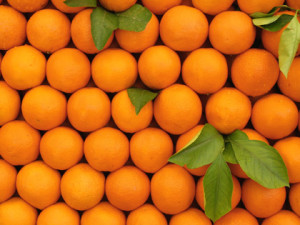 oranges for citrus essential oils