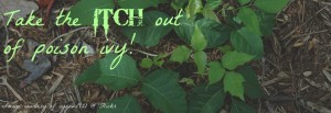 Stop the poison ivy itch!