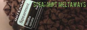 spearmint meltaways recipe using doTERRA essential oil