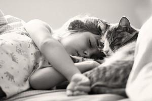 can sleep help heart health? Survey says yes!